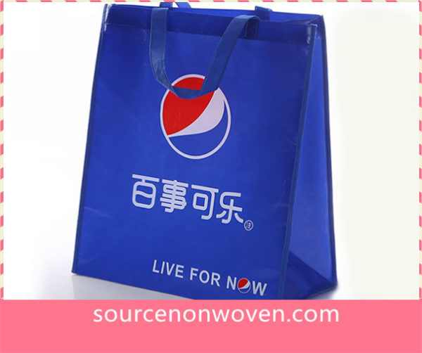 Non woven Promotional Bags